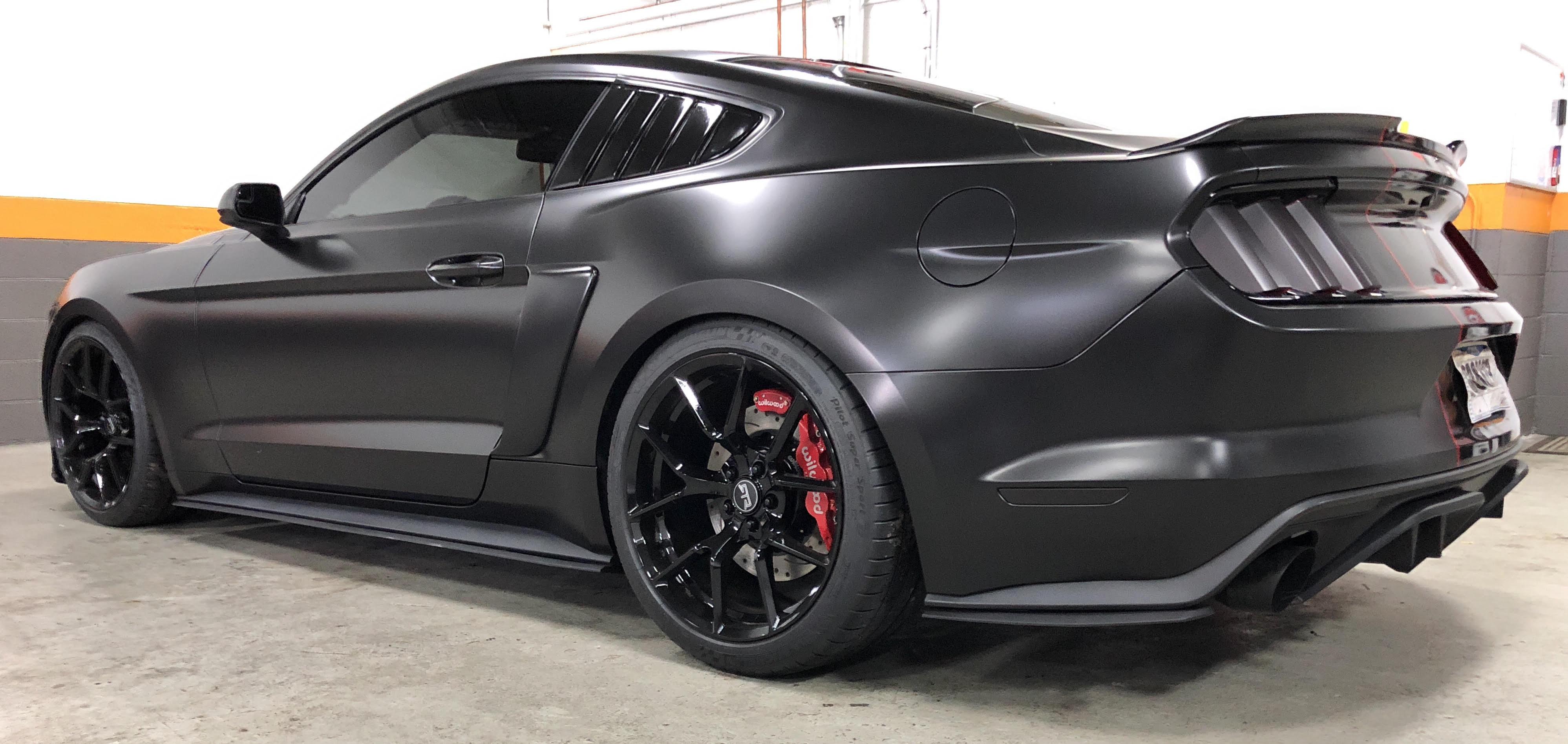NLC Mustang