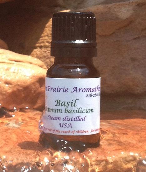Basil (Ocimum basillicum)