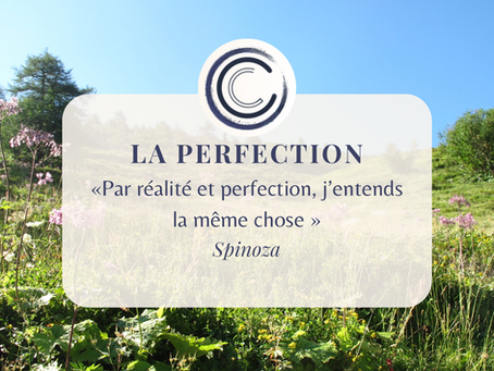 #12 LA PERFECTION