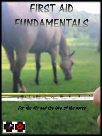 FIRST AID FUNDAMENTALS COVER.jpg