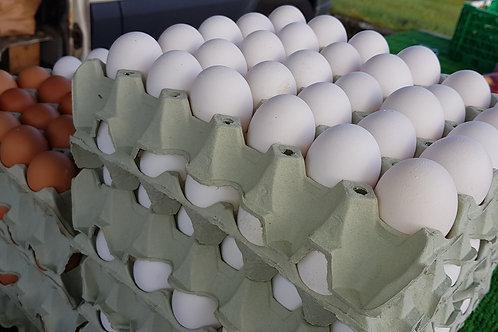 Ferske Egg (30stk)