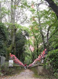 地蔵寺 Jizo temple in Tokyo 2014