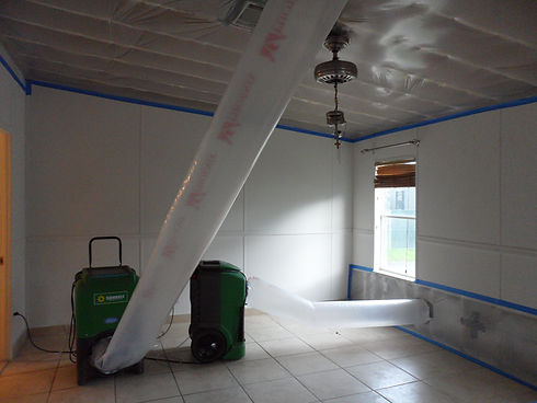 DISASTER RESTORATION AND REMEDIATION SERVICES