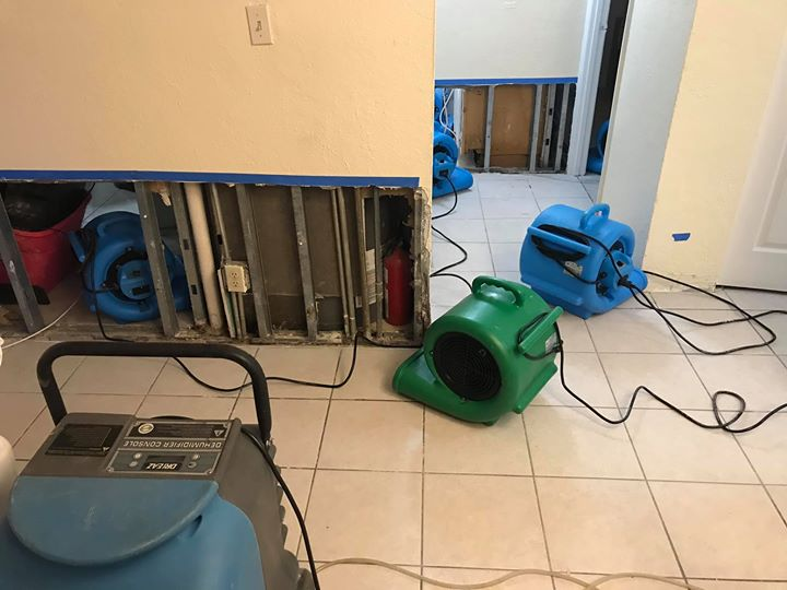 Air Movers Carpet Dryer
