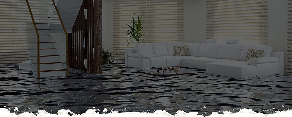 Emergency Cleanup Services Banner