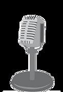ico_radio.png