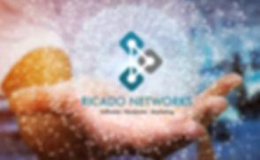 Ricado_networks.jpg