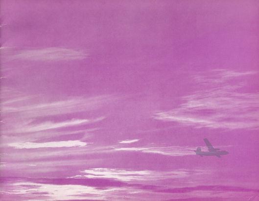 Purple sm.jpg