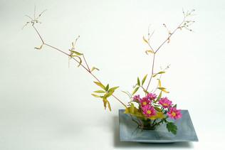 Ikebana_tuotekuvaus_StudioAdessa.jpg