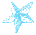 STARFISH-BLUE-faded.png
