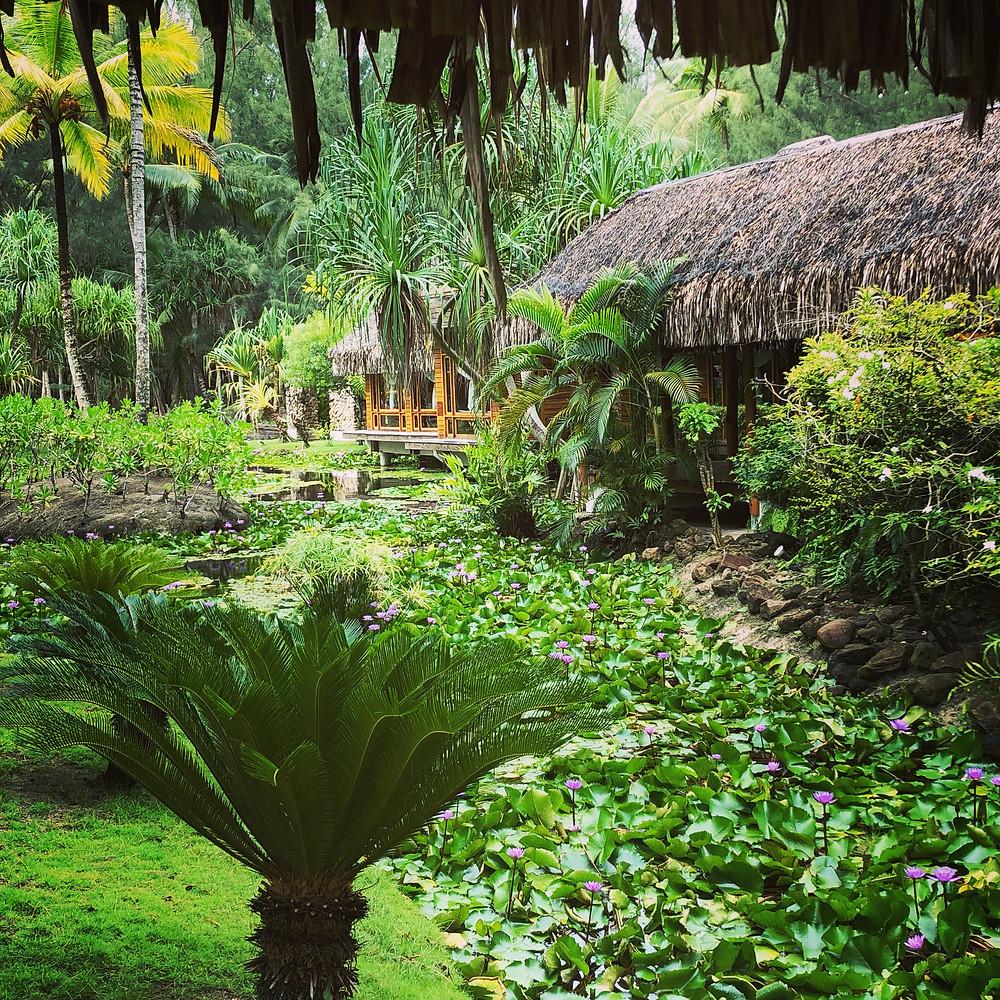 Arlington VA travel agent Tahiti expert in Bora Bora