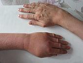 Control 3D dératisation désinsectisation désinfection
