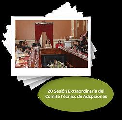 20_sesiones_extraordinaria_del_comité_