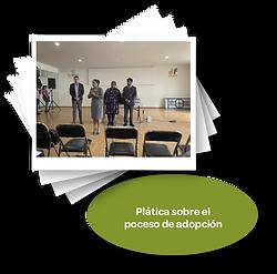 Platica_sobre_el_proceso_de_adopción.png