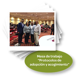 Protocolo_de_adopción_y_acogimineto.png