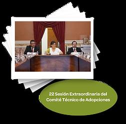 22_Sesión_Extraordinaria_del_Comite_Te