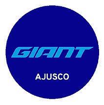 logo giant ajusco.jpg