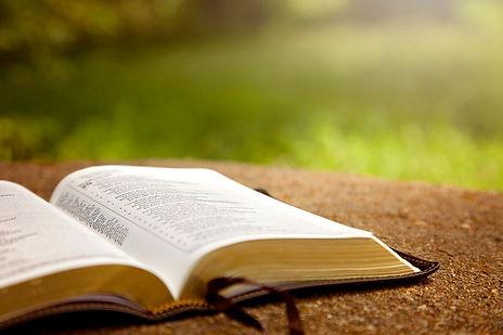 Bible_grass_iStock-846190258.jpg