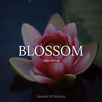 Blossom 1_1.png