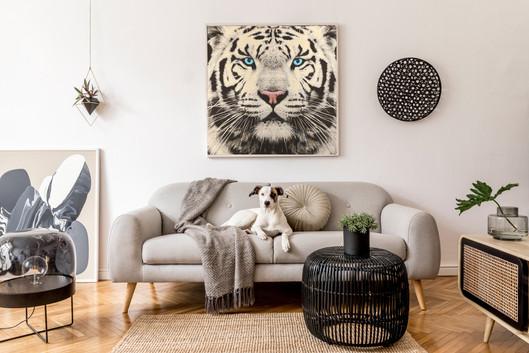 tigre bianca grossa.jpg