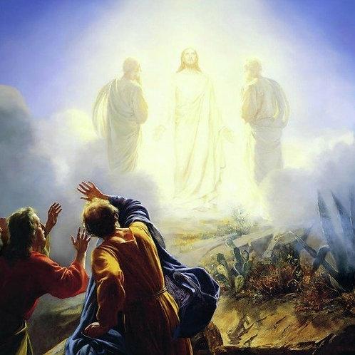 Seasonal Icons - Transfiguration
