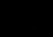 Logo_Salsa_Libre_2018_schwarz[1].png