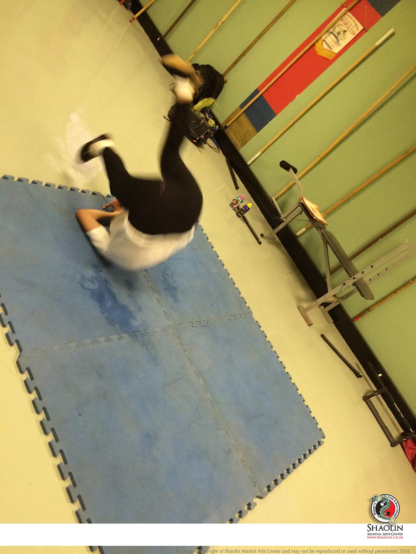 Kung Fu pics 2016042
