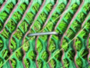 1.12. Rolstoeltoegankelijk GP flex.jpg
