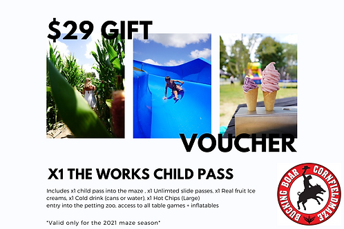 Gift Voucher x1 The Works Child Pass