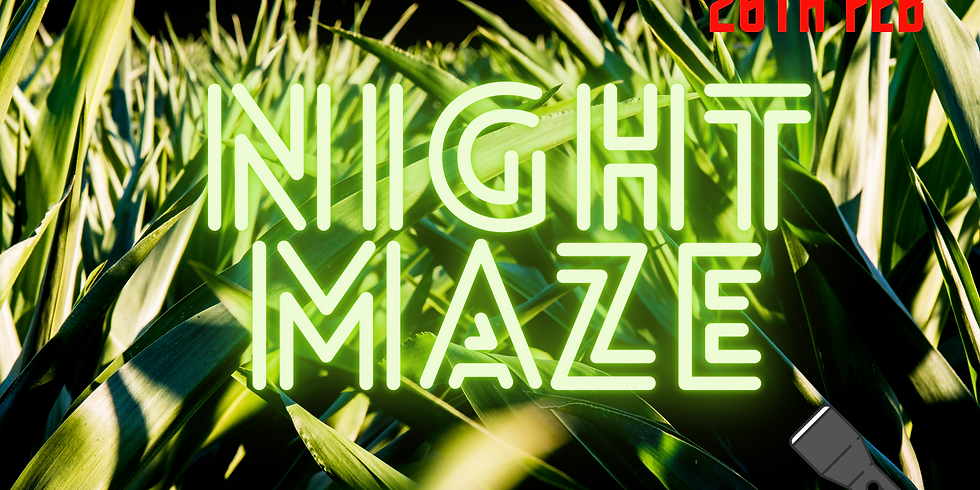 Night Maze 26th Feb