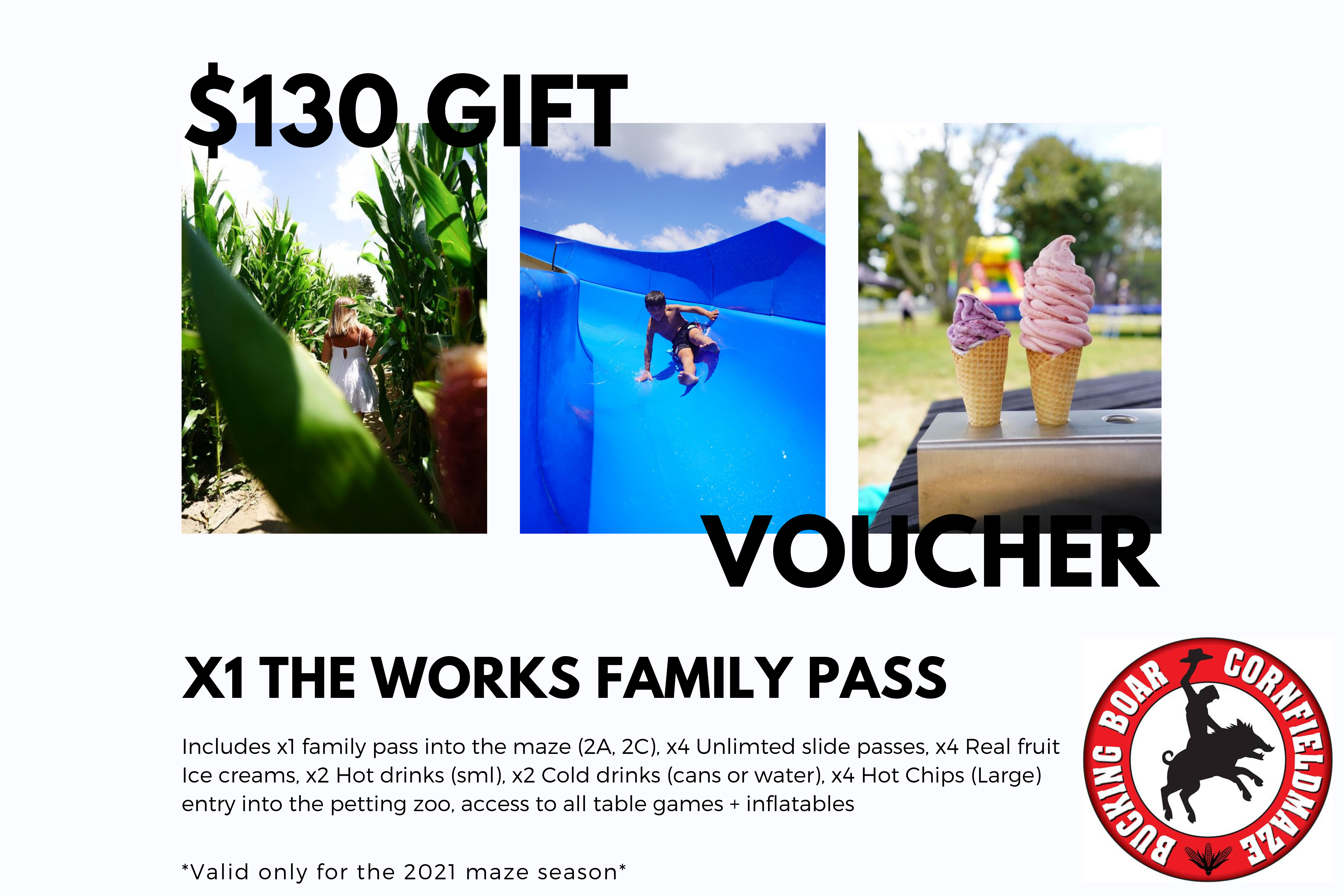 Gift Voucher - The Works Family Pass