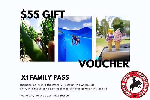 Gift Voucher x1 The Works Family Pass