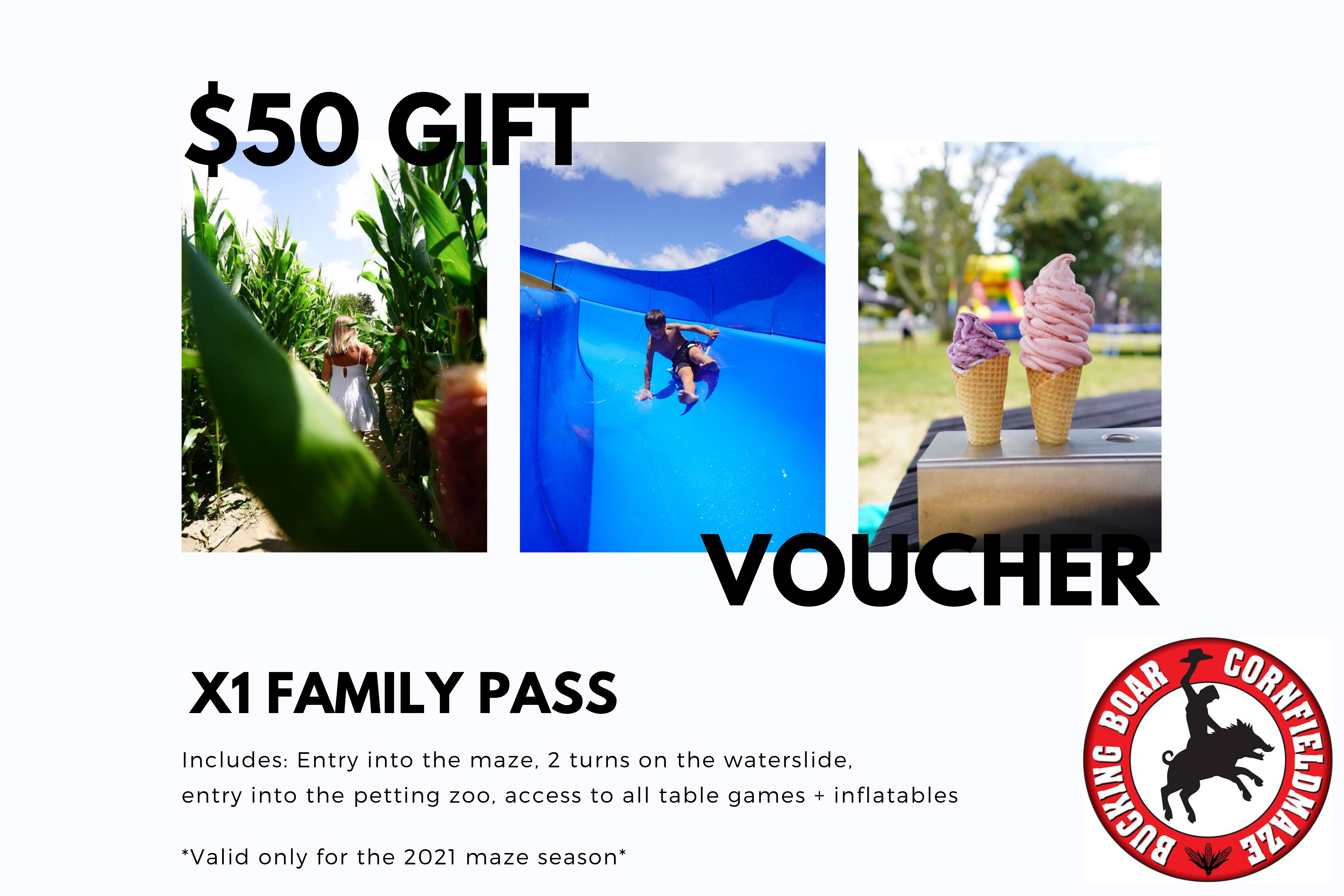 Gift Voucher - Family Pass, x4Slide Pass