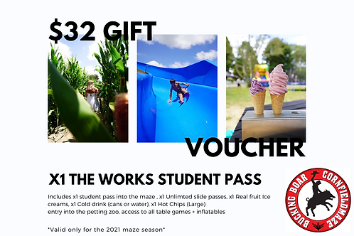 Gift Voucher x1 The Works Student Pass