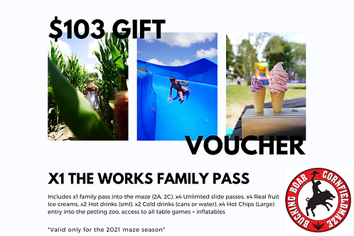 GiftVoucher x1 The Works Family Pass