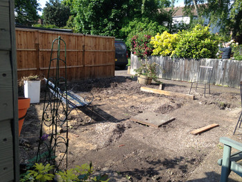 Back Garden During 6.JPG