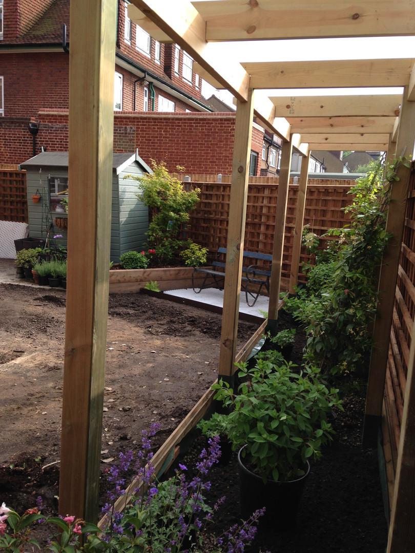 Back Garden During 5.JPG