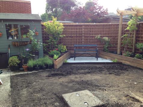 Back Garden During 10.JPG