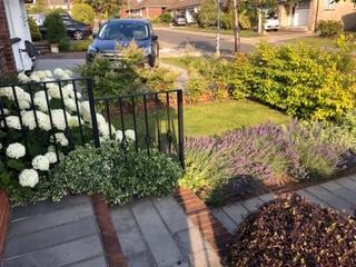 Front Garden After 3.jpg