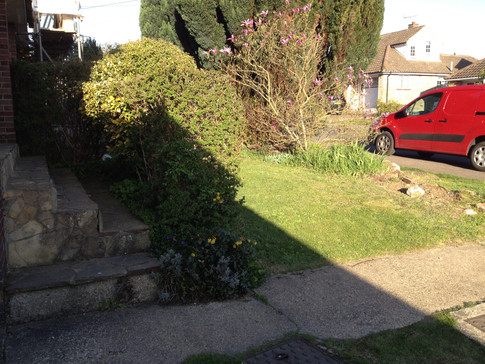 Front Garden Before 2.JPG