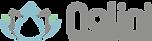 Nalini Yoga & Ernährug Logo