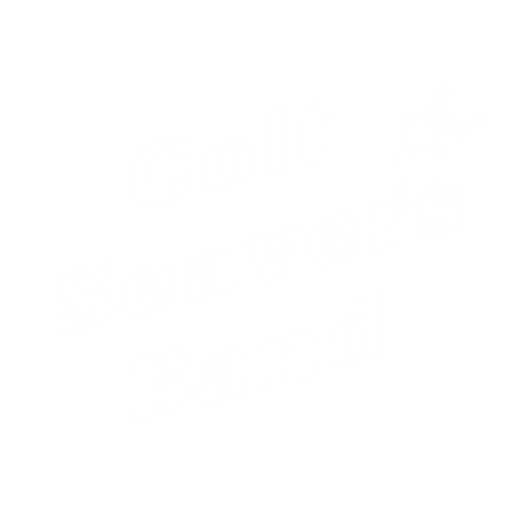 Colt Seavers Band