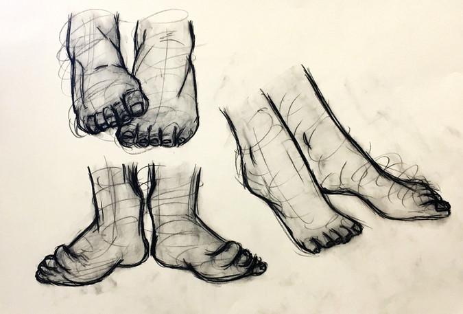 Foot Anatomy Study