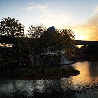 A beautiful view at #epcot for today's #