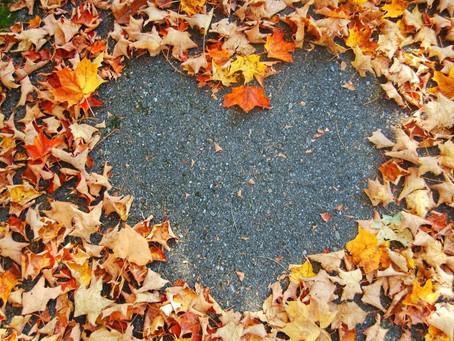 Cultivando un corazón agradecido