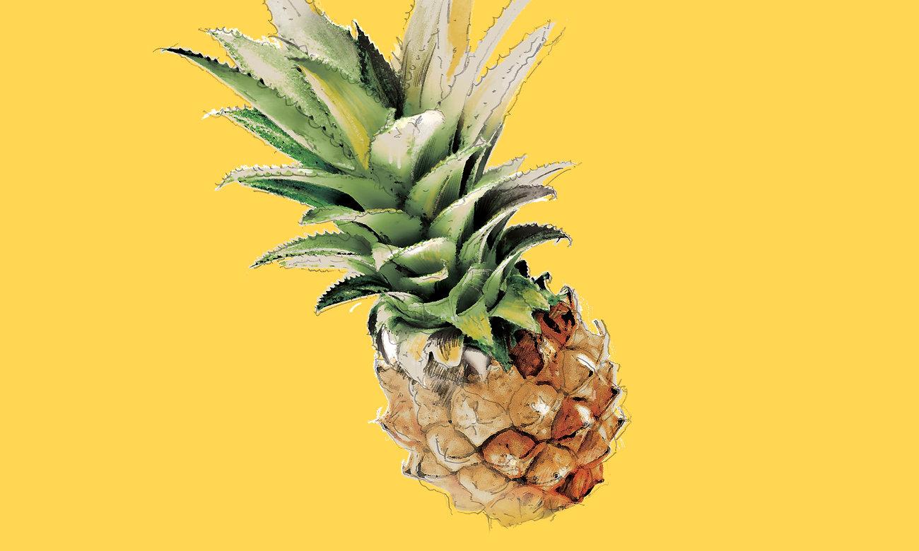 BeeVantage_Illust_Pineapple.jpg