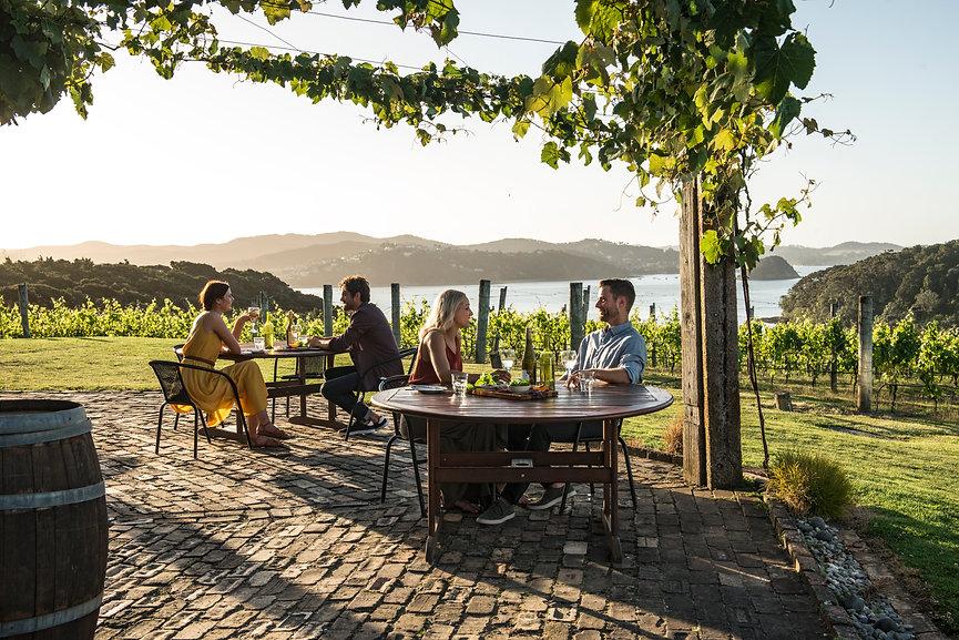 New Zealand wine country.jpg