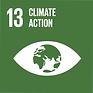 SDG Goal #13 Logo