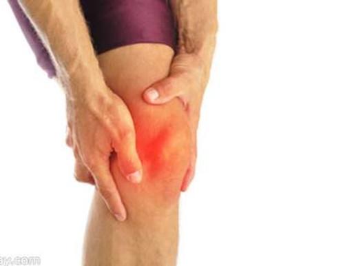 Knee Workshop