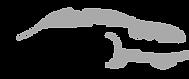 logo-parma-ncc.png